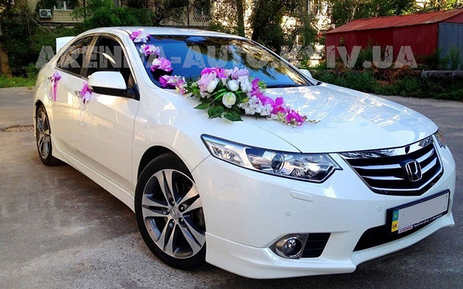 Аренда Honda Accord на свадьбу Киев
